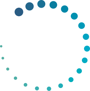 Network Space logo